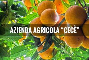 Cece-AzAgricola