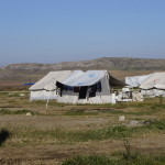 New_Cabala_Camp